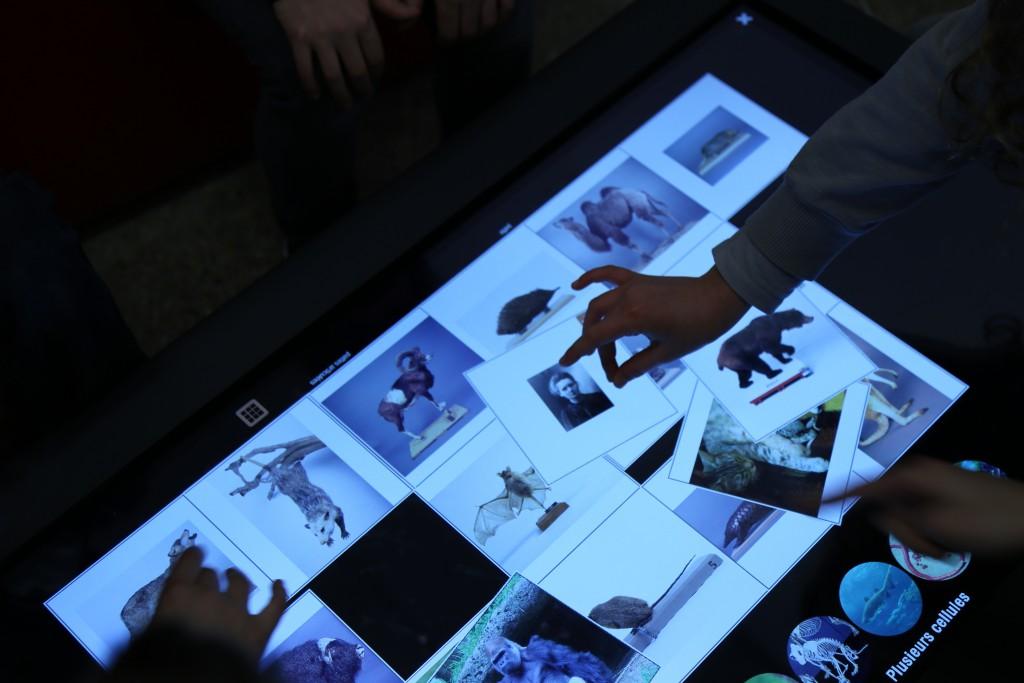 Série de photos, des mains manipulent des images sur la table tactile.